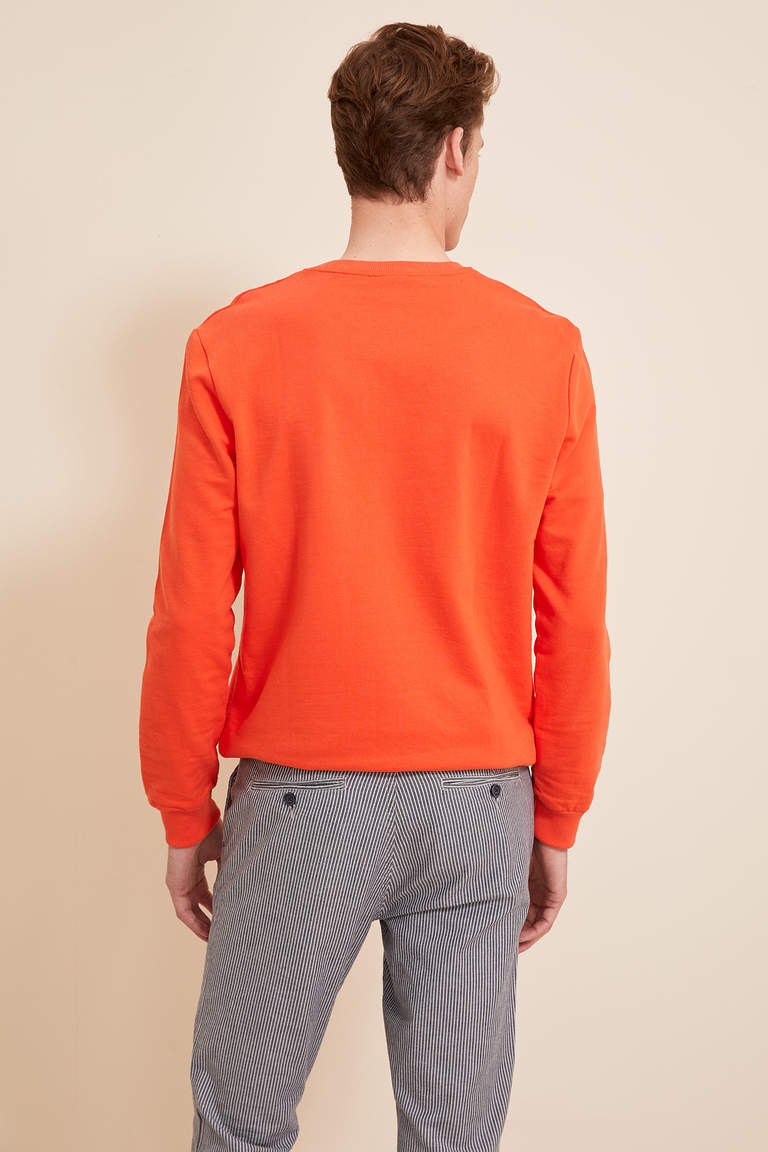 Regular Fit Sweatshirt